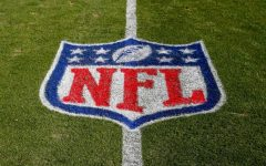 NFL Season Recap and Superbowl Predictions
